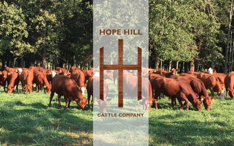 New Website for Hope Hill Farm and Ranch