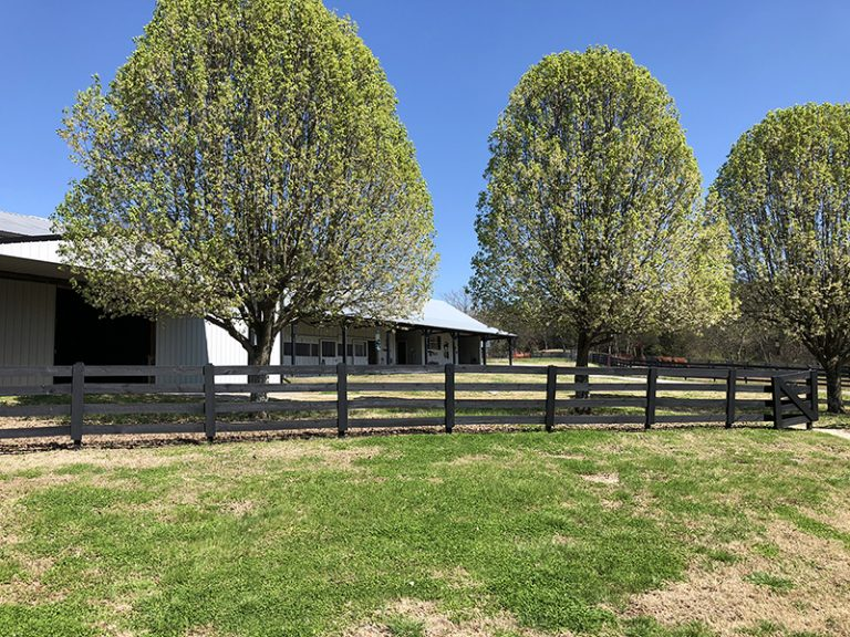 Hope Hill Farm and Ranch | Horse Boarding